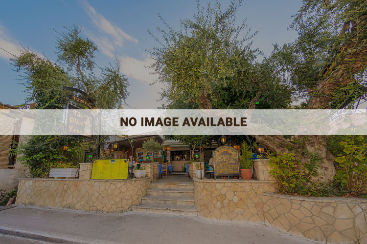 the olive tree taverna -