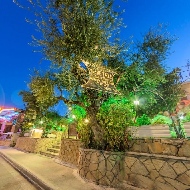 The Olive Tree Taverna