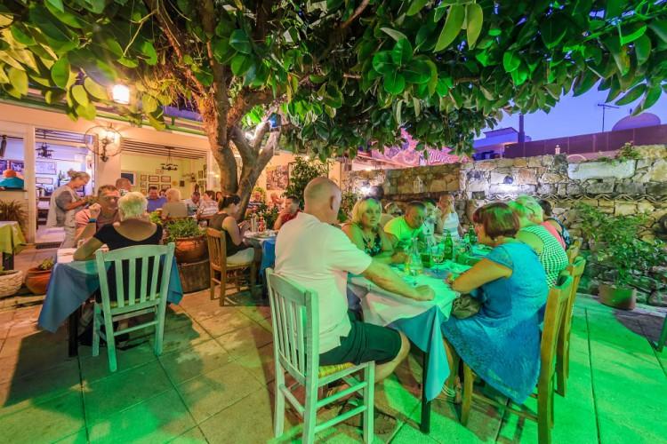 the olive tree taverna - opening night